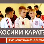 Автор председатель НСНБР А.Г.Огнивцев